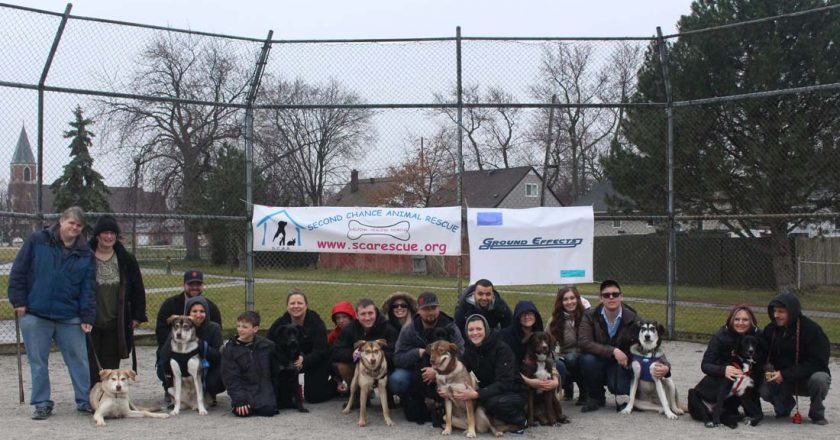 Second Chance Animal Rescue Doggy Play Date!