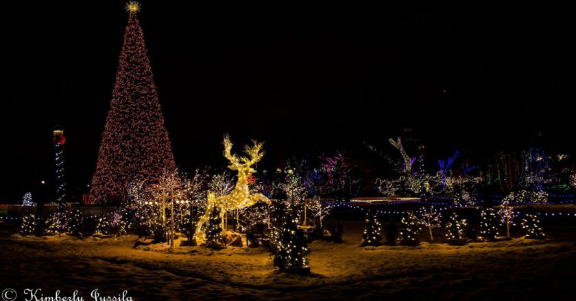 Windsor Artificial Christmas Tree at $400,000 Could Be Guinness Record